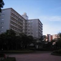 IMG_0117