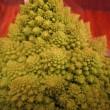 数学的野菜「ロマネスコ」