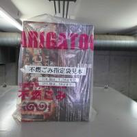 IMG_4090