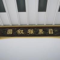 IMG_6753