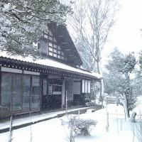 桃沢家の雪 IMG_1024